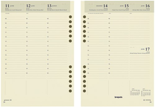 Agendavulling 2022 Brefax 7 7dag/2 pagina 6talig