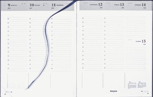 Agenda 2022 Brepols Timing 7dag/2pagina's Nederlands blauw